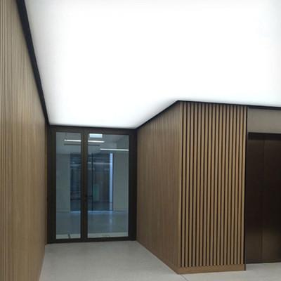 Светящийся натяжной потолок 65 Вт/м2